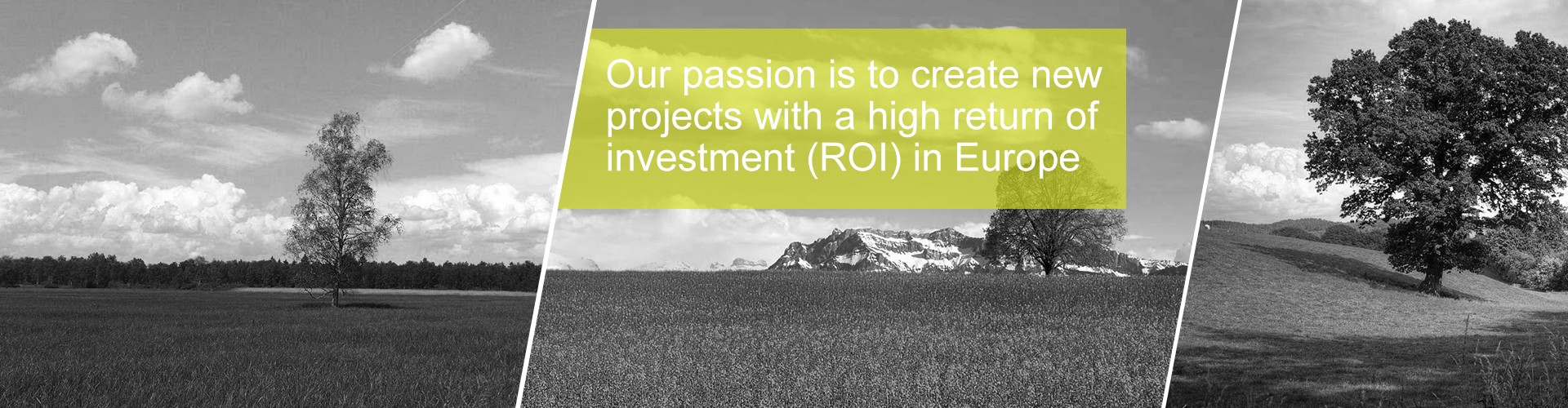 Our passion is to create new projects with a high return of investmen (ROI) in Europe